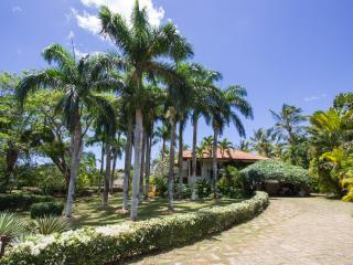 Beautiful and Luxury villa in Caribe