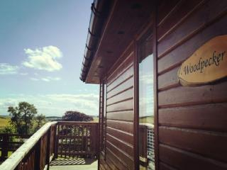 Set in the Fife glens: Woodpecker Lodge, Cupar
