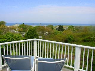 BERNJ - Menemsha Sea Coast Cottage, Gorgeous Waterviews, Walk to Menemsha Beach,