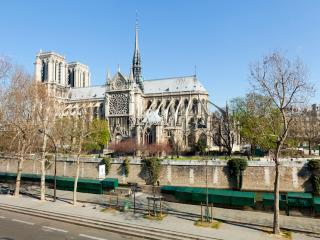 Notre Dame Luxury One Bed with spectacular Views