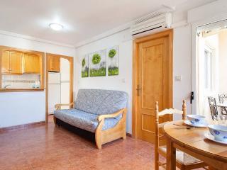 1-berdoom apartment near the beach, Wi-Fi, pet friendly, Torrevieja