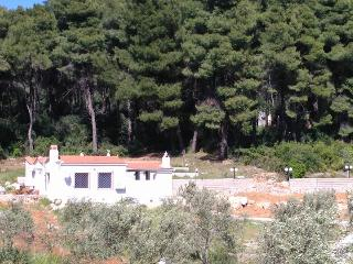 PINE TREES A DREAMY COTTAGE WITH NEW PRIVATE POOL, Skopelos