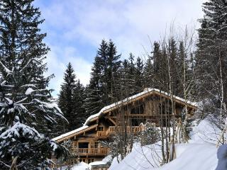 Chalet Grand Cerf, Meribel