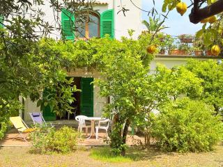 Gardenhouse on the largest Taormina beaches app.n3