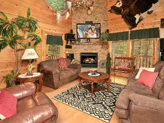 LUXURIOUS 2/2 CABIN WITH INDOOR/OUTDOOR RESORT POOL IN FANTASTIC LOCATION!
