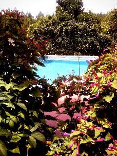 Piscina Exterior/ Jardim