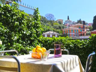 Dahlia, Rapallo