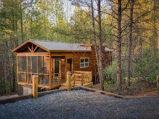 End of the Road Cabin B - Screened Porch, Private Hot Tub