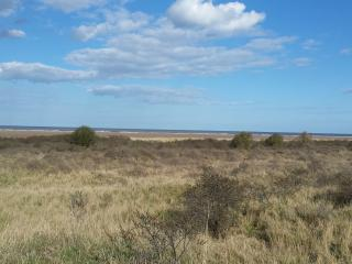 Fantastic, peaceful hideaway by the beach - Dunes Holiday Cottage, Theddlethorpe