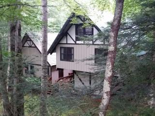 3 bdrm CREEKSIDE Beech Mountain RENTAL sleeps 8