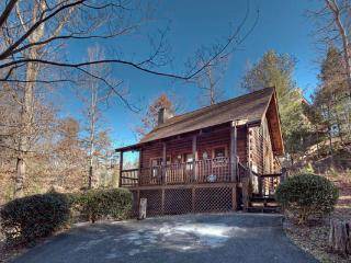 """Eagle Landing"" Family Cabin minutes from Parkway"