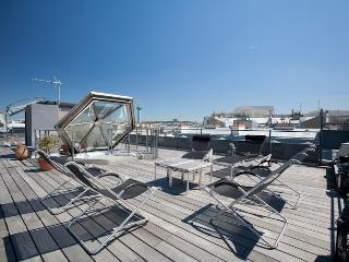 Marais Penthouse - Unique Rooftop terrace and View, Paris