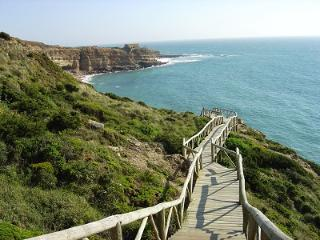 OCEAN VIEW- SWIMMING POOL - PRIVATE YARD - JACUZZI, Ericeira