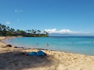 Fantastic 2 Bedroom Just Steps from the Water., Lahaina
