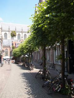 The charming streets of Haarlem