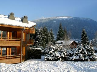 Apartment le Sautaillet (Simply Morzine)