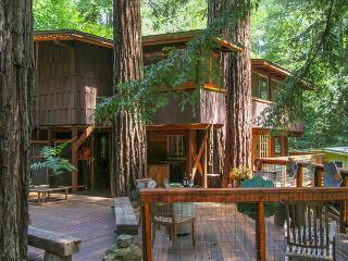 Relaxing getaway in a Tree House nestled right in the Redwoods, Guerneville
