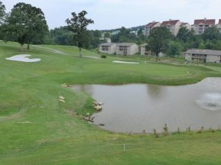 Great Pointe Royale Walk-In One Bedroom Overlooking 10th Green