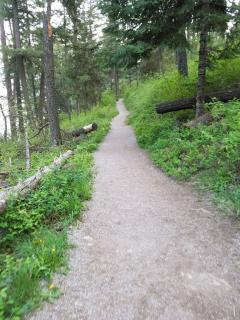Tubbs Hill hiking trails 5 minutes away from the house.