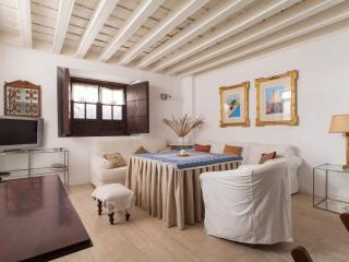 Duplex casa palacio, Seville
