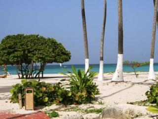 Beautiful apartment sea view, 2 bedrooms and 2 bat, Bavaro