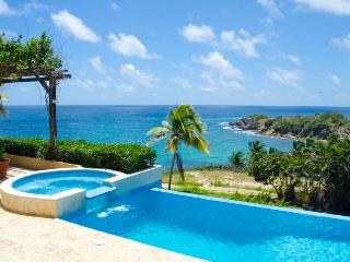 Astonishing Oceanfront Villa with the Best View in Palmas, Pool, Spa and Every, Humacao