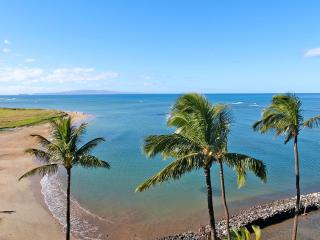 Beautiful, Extensively Upgraded Oceanfront Condo, Kihei