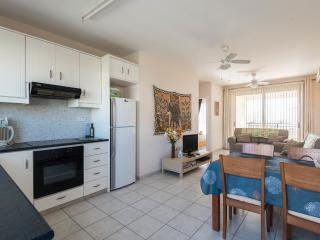 Kitchen & Living Areas