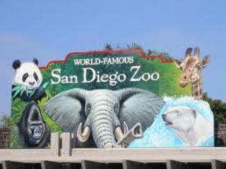 We're convenient to the zoo, Safari park, Legoland and Disneyland