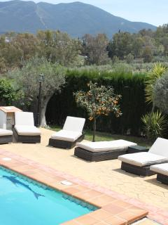 Pool area with orange tree and mountain views