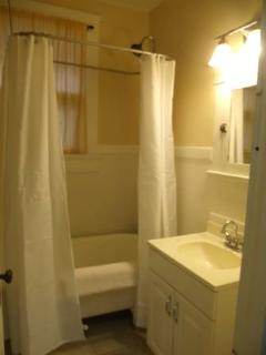 Decisions, decisions... bubble bath or shower - in fun antique claw foot tub w/ extended shower?