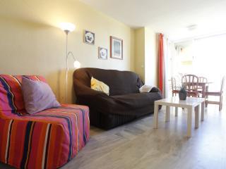Salón y sillón-cama individual