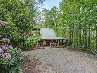 Cozy Getaway, 2 Bedrooms, Hot Tub, Flat Panel TV, Jetted Tub, Sleeps 6, Sevierville