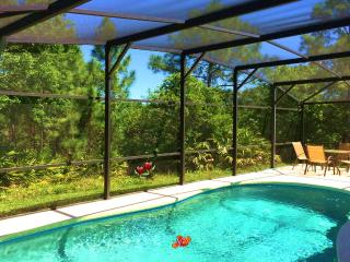 Disney World Area Villa Orlando * 4 Bedrooms * Private Pool * Conservation Views