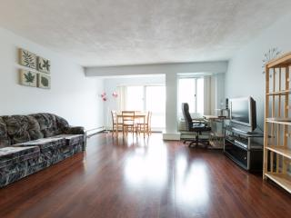 Spacious Condo in Harvard Square with Parking