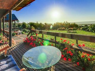 Estate for 10: sprawling field overlooking the sea, 1 dog ok, Vina del Mar