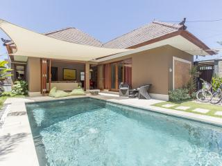 Exciting Luxury 2 bedrooms pool Villa in Sanur