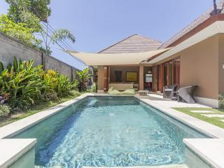 Beautiful Luxury 2 bedrooms pool Villa in Sanur, Suka 2.