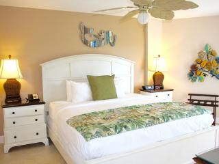 Two Ocean View 2BRs Apartments, Kitchen, Pool, Tennis, Hot Tub, Private Beach