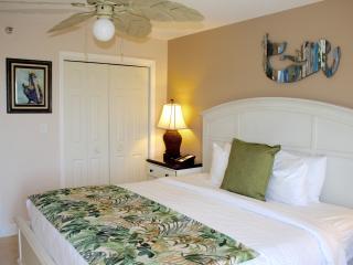 Ocean View 2BR/2BA Apartment, Full Kitchen, Pool, Beach, Water Activities.