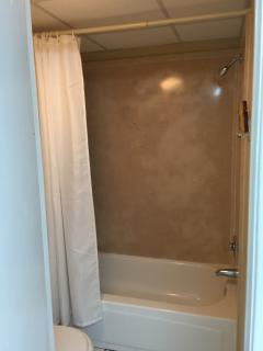 Door from bathroom leads to shower and toilet