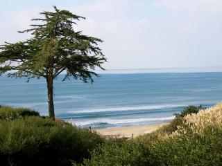 LOW SUMMER RATE FOR OCEAN VIEW AT SEASCAPE RESORT, Aptos
