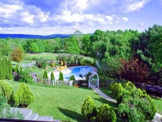 TyroleanGardenSuite/prvt wiz patio in art villa, Purcellville