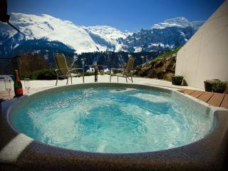 ALPHAVEN  Apartment A Panoramic Views Hot Tub Fire, Engelberg