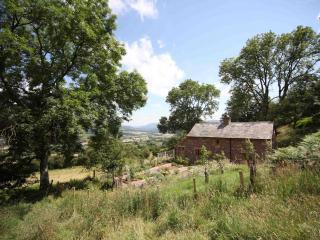 42873 Cottage in Crickhowell, Aberafon