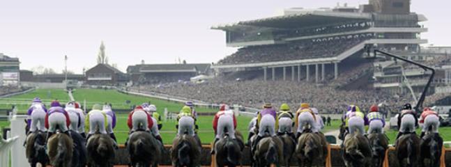 Cheltenham Races, Prestbury Park