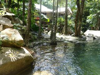 Shaded natural swimming pool 15 metres long and 3 metres deep for your private enjoyment