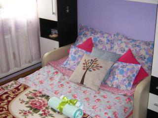 Cozy, Vampire-Free Room in Cluj-Napoca