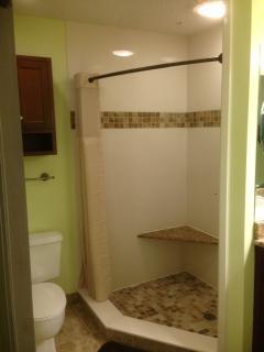 Master Bath shower w/ custom tile