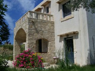 Komfortables Feriensteinhaus mit Garten, Pitsidia